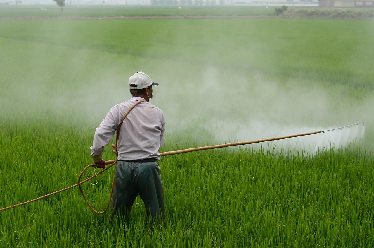 Penggunaan Pestisida Berlebihan