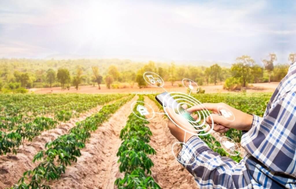 Pertanian Hortikultura Budidaya Pertanian Modern