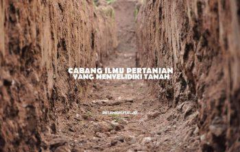 Cabang Ilmu Pertanian yang Menyelidiki Tanah