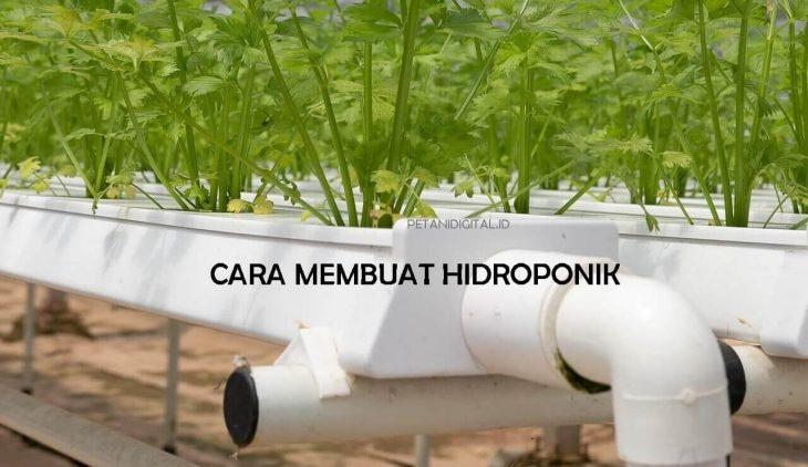 Cara Membuat Hidroponik Dengan Paralon