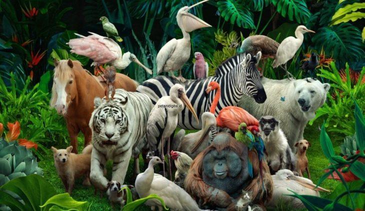 Hewan dan Tumbuhan Langka di Indonesia