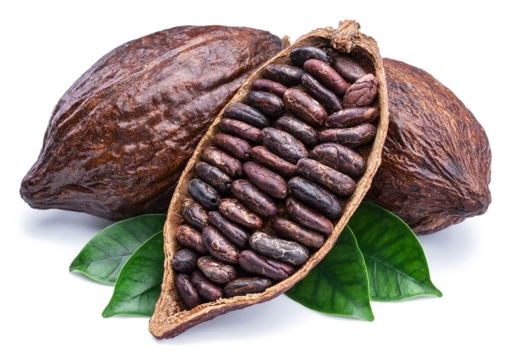 Kakao - Komoditas Ekspor Indonesia
